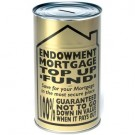 Endowment Mortgage Top Up Fund