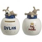 Boofle Pots Of Pennies Mini Money Pot - Dylan